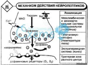 Взаимодействие Лоратадина с алкоголем, механизм действия