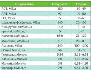 Заболевания печени: биохимический анализ крови
