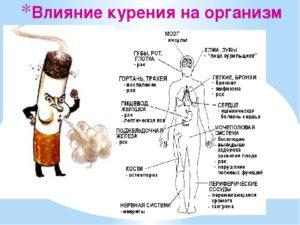 Алкоголь и курение: вред для организма человека, сигареты, влияние на здоровье