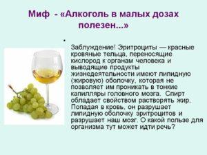 Вред и польза водки: полезные свойства для организма человека, вредна ли в малых количествах