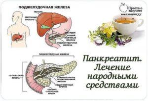 Лечение острого панкреатита народными средствами в домашних условиях, лечение поджелудочной железы травами и медом