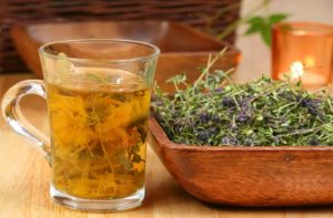 Эффективные травы и растения от похмелья: проверенные рецепты