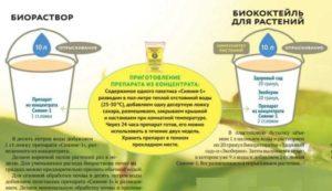 Совместимость с лекарствами: инструкция, противопоказания, советы