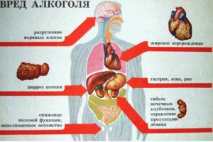 Вред алкоголя на организм человека кратко