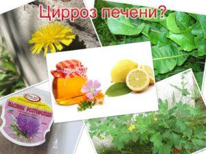 Как правильно принимать артишок для печени - Методы и средства лечения болезней