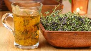 Чабрец от алкоголизма (трава тимьян): описание, лечебный свойства, как принимать, настойка и отвар