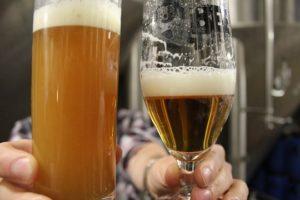 Польза и вред нефильтрованного пива, отличие, разница, какое полезнее