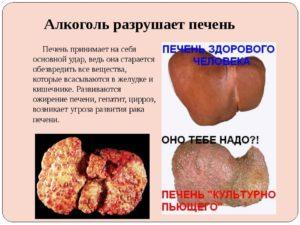 Цирроз печени: заболевание, разрушение печени