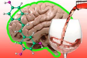 Фенотропил и алкоголь