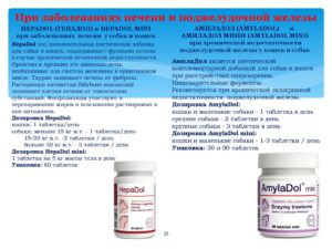 Какие лекарства принимают при панкреатите